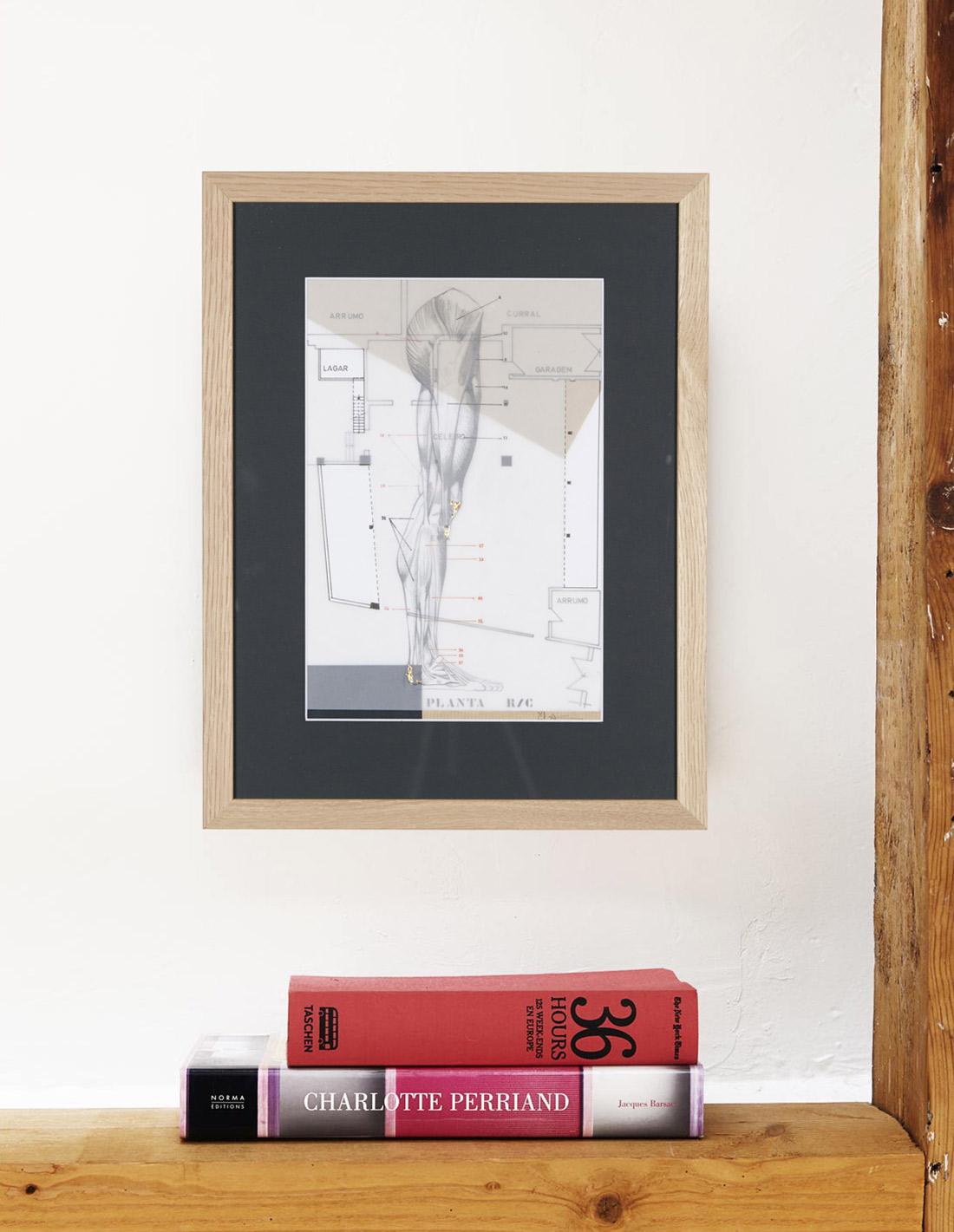 Milena Cavalan - Oeuvre sur papier - Construction-anatomique-Planta1