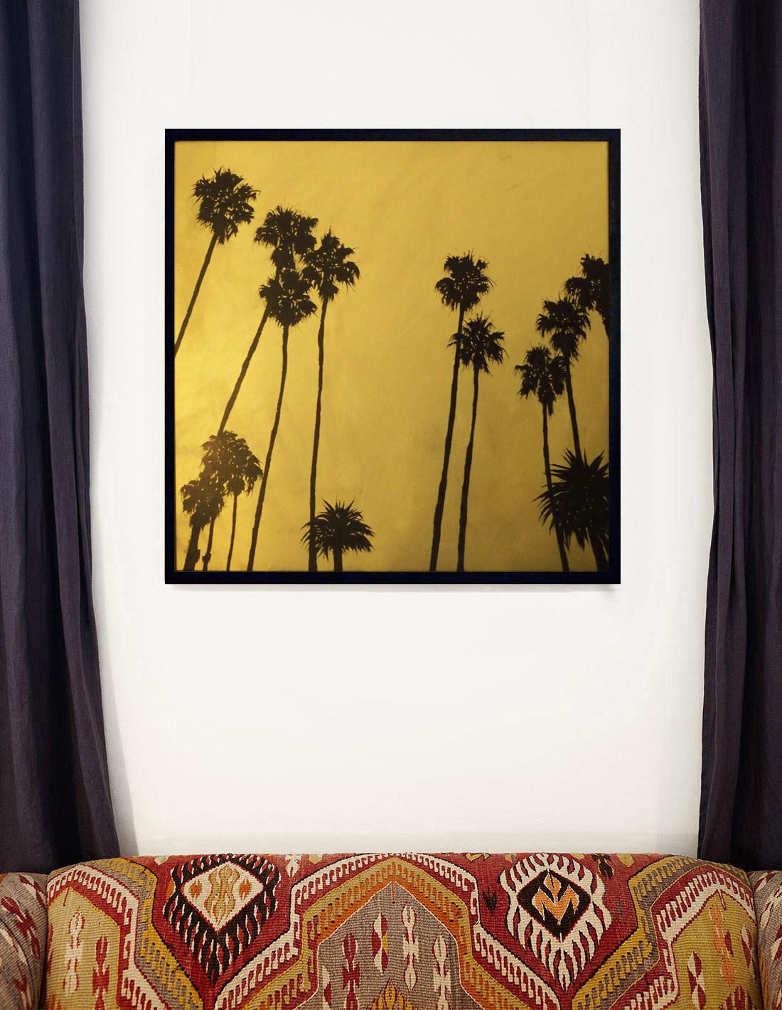 Hubert Jouzeau - Grands palmtrees