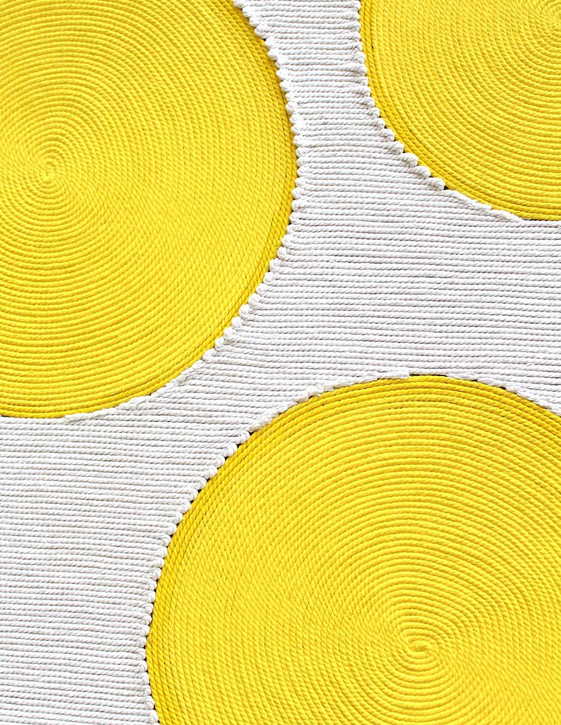 mimosa-close-up