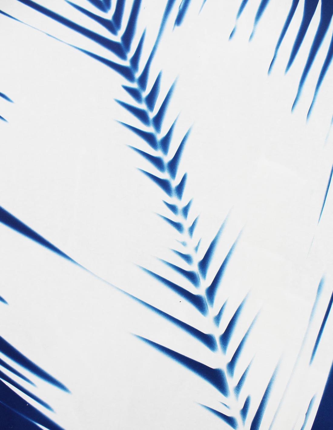 Palme-close-up